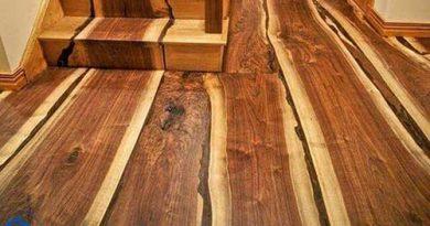 Tổng hợp các loại gỗ tự nhiên dùng trong nội thất nhà ở, văn phòng