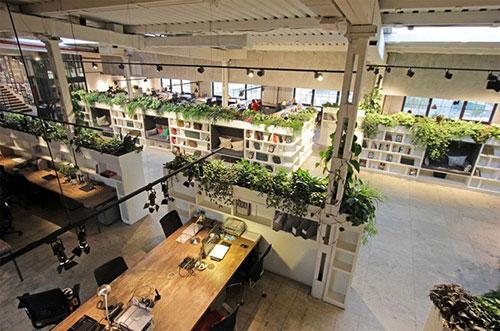 Những ưu điểm khi thiết kế mô hình văn phòng hiện đại gắn với thiên nhiên