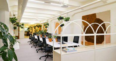 3 mẹo nhỏ giúp bạn thiết kế nội thất văn phòng giá rẻ đẹp, ấn tượng